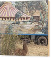 circus circus 2 - A vintage circus wagon with african paint and llama camel  Wood Print