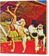 Circus Dog Act Wood Print