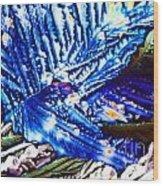 Citric Acid Microcrystals Abstract Color Art Wood Print