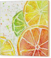 Citrus Fruit Watercolor Wood Print