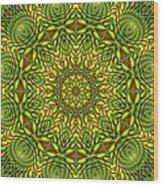 Citrus K12-33 Wood Print