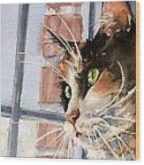 City Cat Wood Print