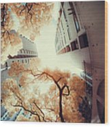 City In Harmony With Nature Wood Print