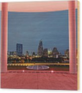 City Of Austin Framed Wood Print