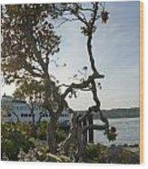 City Of Bremerton Waterfront Park Wood Print