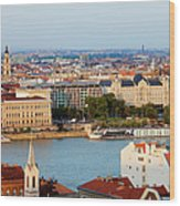 City Of Budapest Cityscape Wood Print