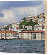 City Of Istanbul Cityscape Wood Print