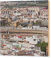 City Of Seville Cityscape In Spain Wood Print