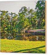 City Park New Orleans Wood Print