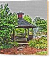 City Park Wood Print