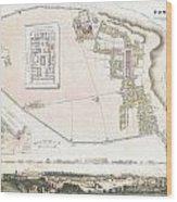 City Plan Or Map Of Pompeii Wood Print