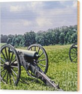 Civil War Cannons Wood Print