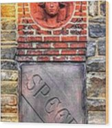 Civil War Correspondents Arch Detail B - South Mountain Battlefield - Gathland State Park Md Wood Print