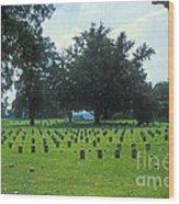 Civil War Gravesites Wood Print