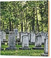 Civitl War Warrior Graves Wood Print