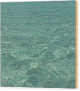 Clear Water Of Guam Wood Print