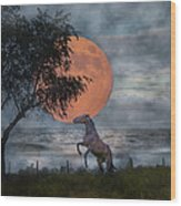 Claiming The Moon Wood Print by Betsy Knapp