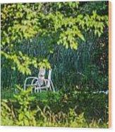 Clandestine Chair Wood Print by Jason Brow
