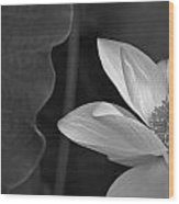 Clarity Of Heart Wood Print