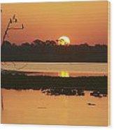 Classic Florida Sunrise Wood Print