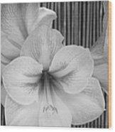 Classic Lilies Wood Print