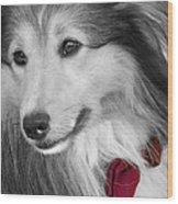 Classy Red Wood Print