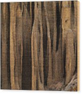 Clay Organ Pipes Formation In Front Wood Print