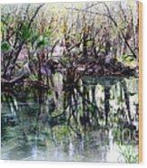 Clear Florida Springs Wood Print