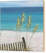 Clear Water Florida Wood Print