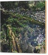 Clearwater Falls Series 17 Wood Print