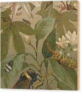 Clematis Cicada And Beetles 1894 Wood Print