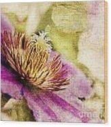 Clematis Closeup Wood Print