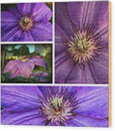 Clematis Collage Wood Print