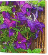 Clematis On The Fence-2014 Wood Print