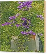 Clematis Vine On Mailbox Wood Print