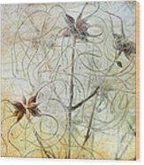 Clematis Virginiana Seed Head Textures Wood Print