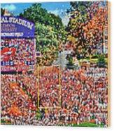 Clemson Tigers Memorial Stadium II Wood Print