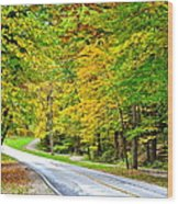 Cleveland Metroparks Wood Print