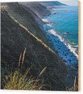 Cliff Grass At Big Sur Wood Print