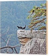 Cliff Hanging Wood Print