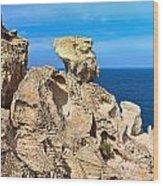 cliff in San Pietro island Wood Print