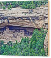 Cliff Palace From Chapin Mesa Top Loop Road In Mesa Verde National Park-colorado  Wood Print