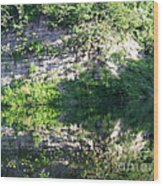 Cliff Reflections Two Wood Print