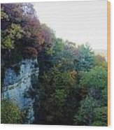 Rock Cliff With Trees Wood Print