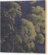 Cliffhangers Wood Print