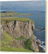 Cliffs Along The Rugged North Coast Wood Print