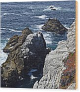 Cliffs And Coastline At California's Point Lobos State Natural Reserve Wood Print by Bruce Gourley