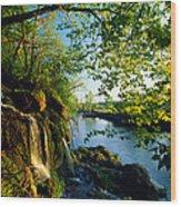 Cliffs And Trees Along Malanaphy Wood Print