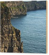 Cliffs Of Moher Clare Ireland Wood Print