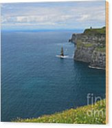 Cliffs Of Moher Looking North Wood Print